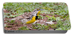 Eastern Meadowlark Sturnella Magna Portable Battery Charger