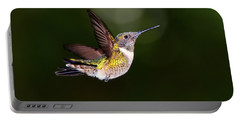 Flight Of A Hummingbird Portable Battery Charger