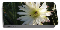 Flowering Cactus 1 Portable Battery Charger by Mariusz Kula