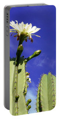 Flowering Cactus 2 Portable Battery Charger by Mariusz Kula