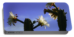 Flowering Cactus 4 Portable Battery Charger by Mariusz Kula