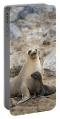 Galapagos Sea Lion And Pup Champion Portable Battery Charger
