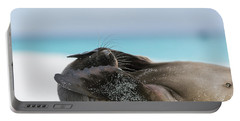 Galapagos Sea Lion Pup Covering Face Portable Battery Charger