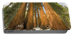 Giant Sequoias Sequoia N P Portable Battery Charger