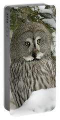 Great Grey Owl Portable Battery Charger