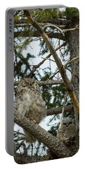 Great Horned Owls Portable Battery Charger