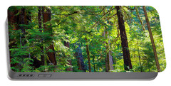 Hoh Rain Forest Portable Battery Charger