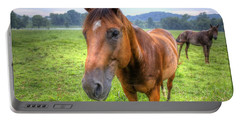 Horses In A Field Portable Battery Charger
