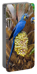 Hyacinth Macaws Anodorhynchus Portable Battery Charger