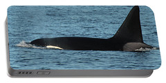 Portable Battery Charger featuring the photograph Male Orca Killer Whale In Monterey Bay California 2013 by California Views Mr Pat Hathaway Archives