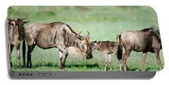 Newborn Wildebeest Calf Portable Battery Charger