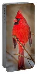 Cardinal Portable Batteries Chargers