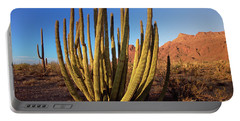 Organ Pipe Cactus Natl Monument Portable Battery Charger
