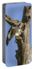 Osprey Pose Portable Battery Charger