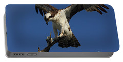 Osprey With A Fish Photo Portable Battery Charger