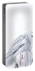 Piercing Eyes Portable Battery Charger