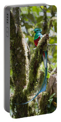 Resplendent Quetzal Male Costa Rica Portable Battery Charger
