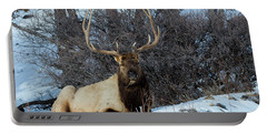 Rocky Mountain Elk Portable Battery Charger