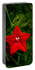 Scarlet Morning Glory Portable Battery Charger