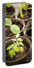 Seedlings Growing In Peat Moss Pots Portable Battery Charger