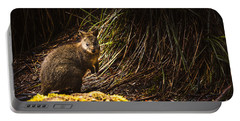 Small Marsupial Pademelon In Thick Tasmania Forest Portable Battery Charger