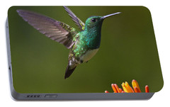 Snowy-bellied Hummingbird Portable Battery Charger by Heiko Koehrer-Wagner