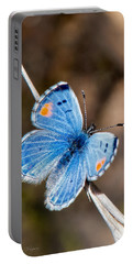 Portable Battery Charger featuring the photograph Sonoran Blue by Jim Thompson