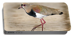 Southern Lapwing Portable Battery Charger