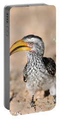 Southern Yellow-billed Hornbill Portable Battery Charger