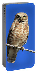Stare Down Portable Battery Charger