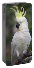 Sulphur-crested Cockatoo Displaying Portable Battery Charger