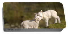 Sweet Little Lambs Portable Battery Charger by Angel  Tarantella