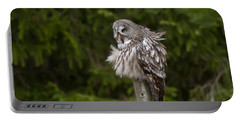 The Great Grey Owl Portable Battery Charger