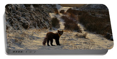 Portable Battery Charger featuring the photograph The Pine Marten's Path by Gavin Macrae