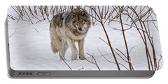 Portable Battery Charger featuring the photograph Timber Wolf by Wolves Only