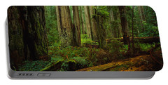 Trees In A Forest, Hoh Rainforest Portable Battery Charger