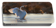Trumpeter Swan Cygnus Buccinator Portable Battery Charger