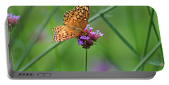 Variegated Fritillary Butterfly In Field Portable Battery Charger