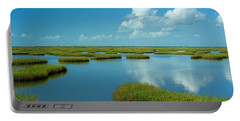 Wetlands Portable Battery Charger
