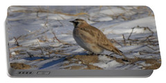 Winter Bird Portable Battery Charger by Jeff Swan