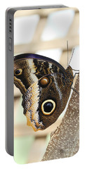 Yellow-edged Giant Owl Butterfly #4 Portable Battery Charger by Judy Whitton