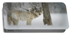 Timber Wolf Pictures Portable Battery Charger