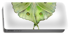 100 Luna Moth Portable Battery Charger