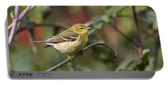 Blackpoll Warbler Portable Battery Charger