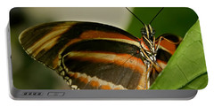 Portable Battery Charger featuring the photograph Butterfly by Olga Hamilton