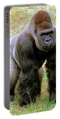 Designs Similar to Western Lowland Gorilla