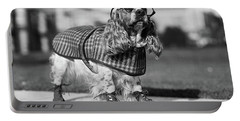 1930s Cocker Spaniel Wearing Glasses Portable Battery Charger