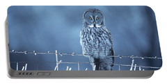 1990s Great Gray Owl Strix Nebulosa Portable Battery Charger