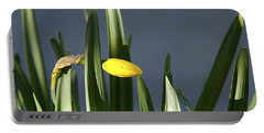 1st Daff Portable Battery Charger by Joe Schofield