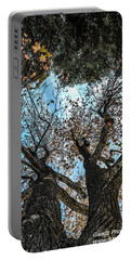 Portable Battery Charger featuring the photograph 1st Tree by Gandz Photography